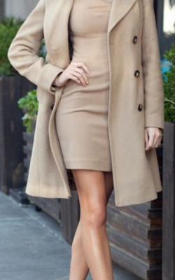 классическое пальто с платьем1