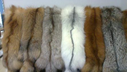 Где можно купить мех для пошива верхней одежды