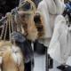 Где купить шубу в Пятигорске: рынок VS фабрики