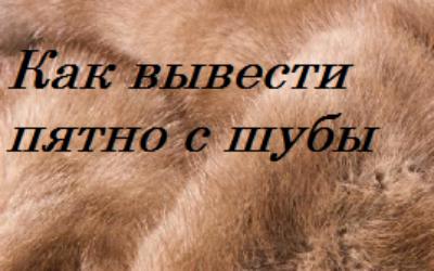 Как вывести пятно с меха шубы