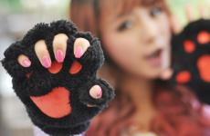 Ультрамодные перчатки без пальцев или кошачьи перчатки